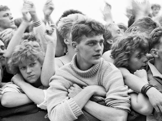 young men at a concert