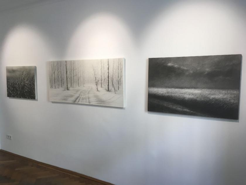 view of the gallery, Danja Akulin solo show 2018