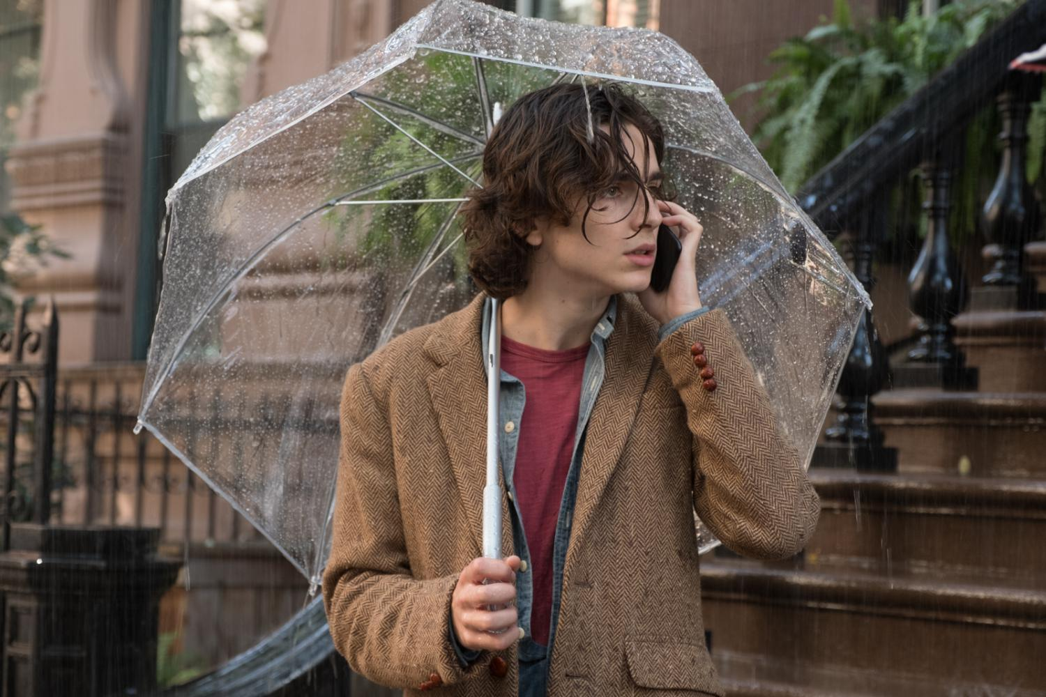 "Timothy Chalamet in ""A Rainy Day in New York"""
